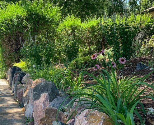 Landscaping Boulders Native Plants Sunnyside Denver CO