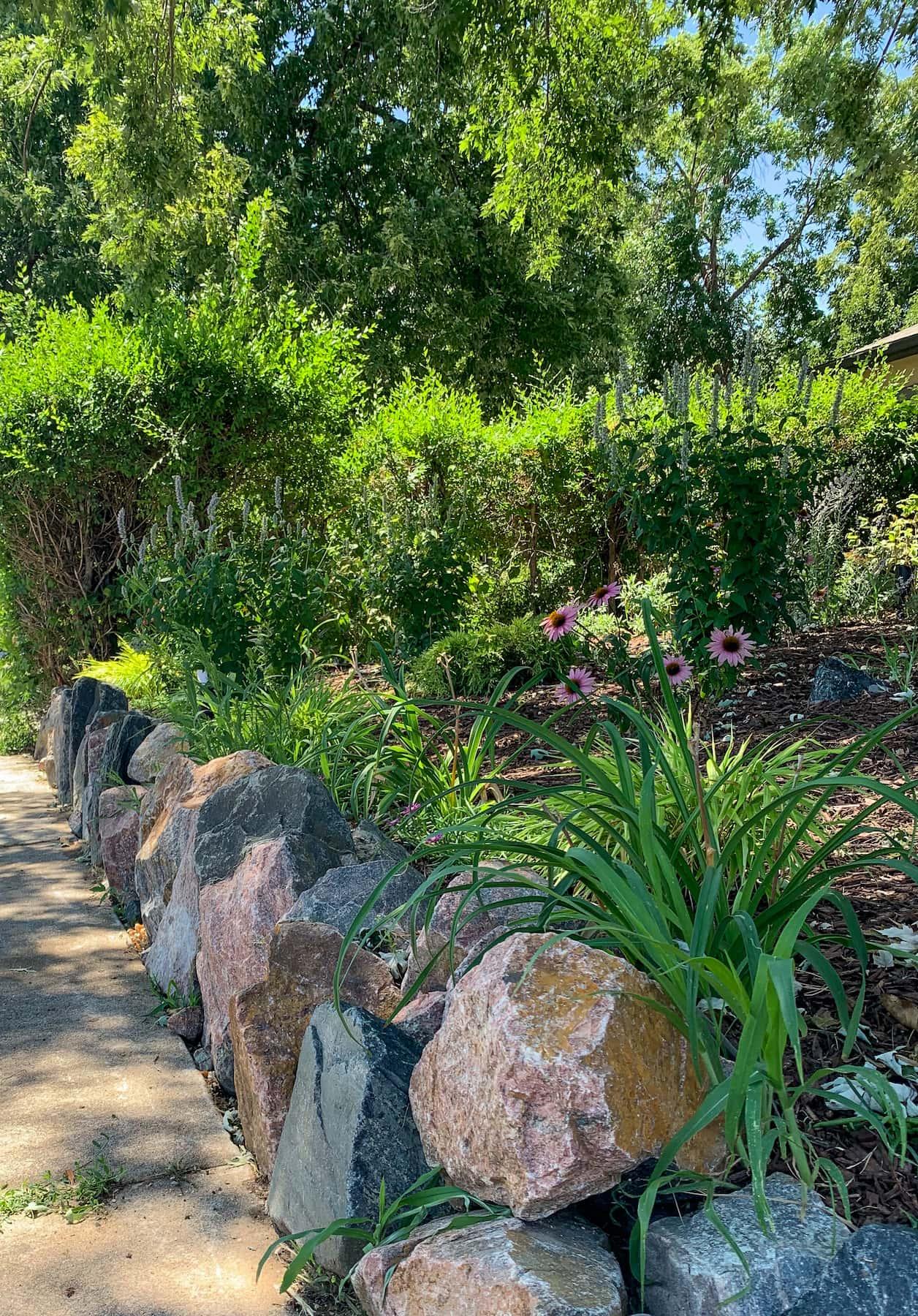 Landscaping Boulders Native Plants Sunnyside Denver CO