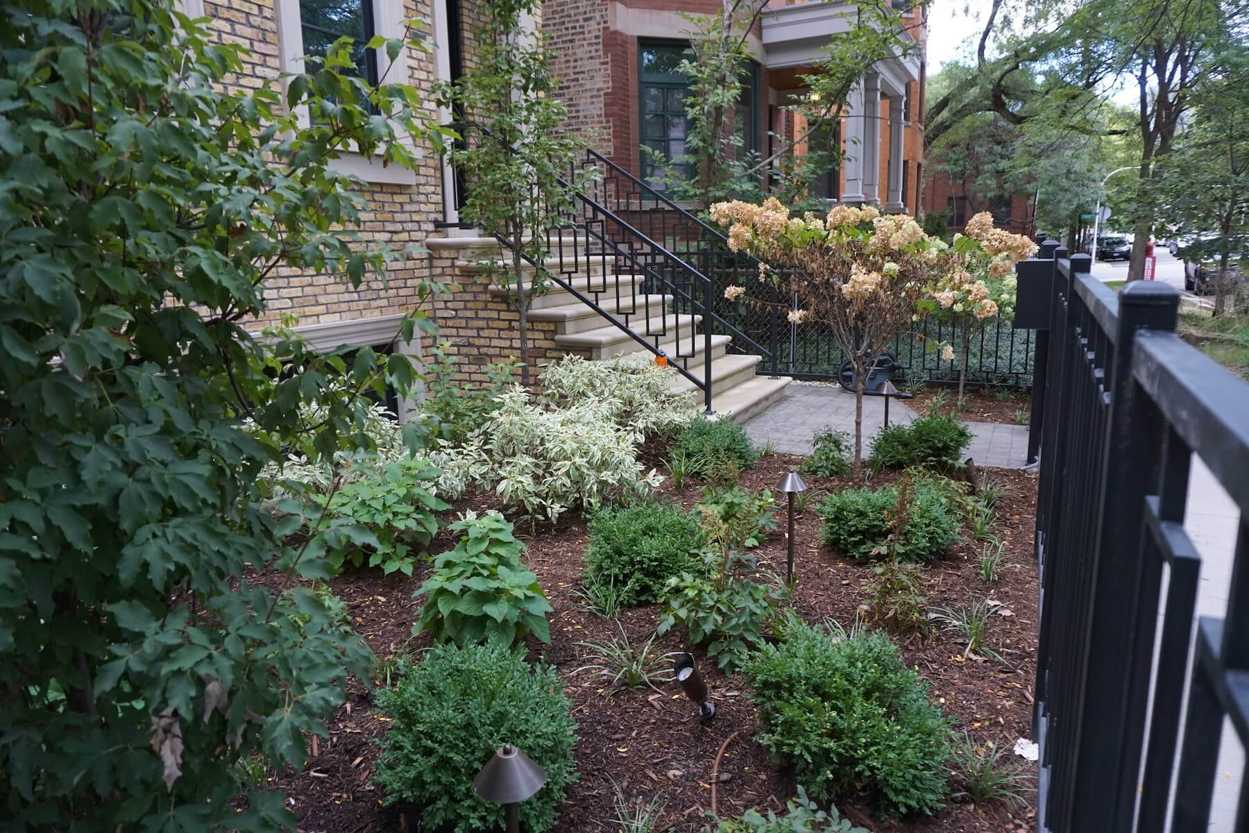 Front Plantings Rot Iron Fence Denver CO